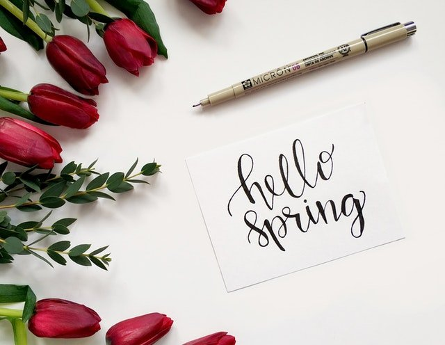 "spring tulips and ""hello spring"" written on a card"